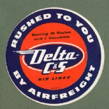 Airline luggage label Delta Air line  #128